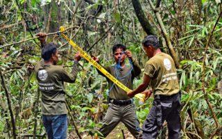 Snare removal © Pro Natura Foundation