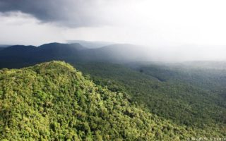A view of the Cardamom Rainforest Landscape © Wildlife Alliance