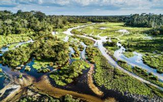 Odzala landscape © Scott Ramsay/Love Wild Africa