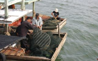 Fishermen trialling TEDs © Marine Research Foundation