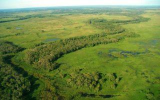 The Pantanal © Rafael Hoogesteijn/Panthera Brazil ADO-M.